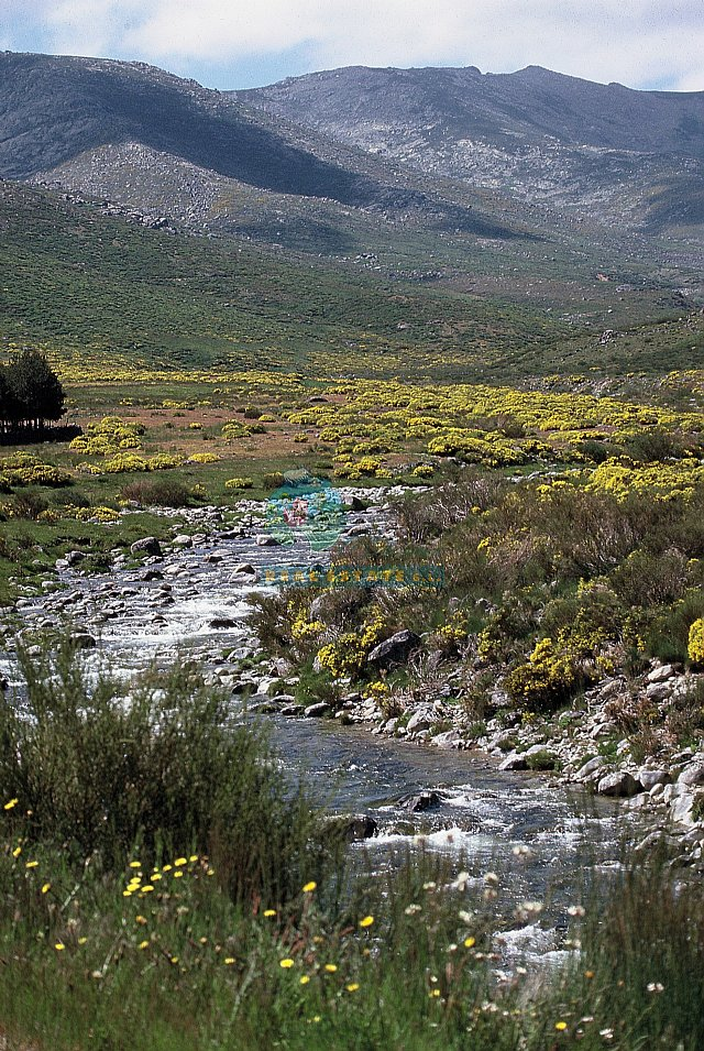 Why buy a property in Gredos?