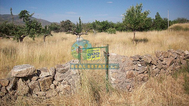 Rural land in Sierra de Gredos, ideal for cottage.